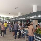 Feira Agroecológica - Assembleia