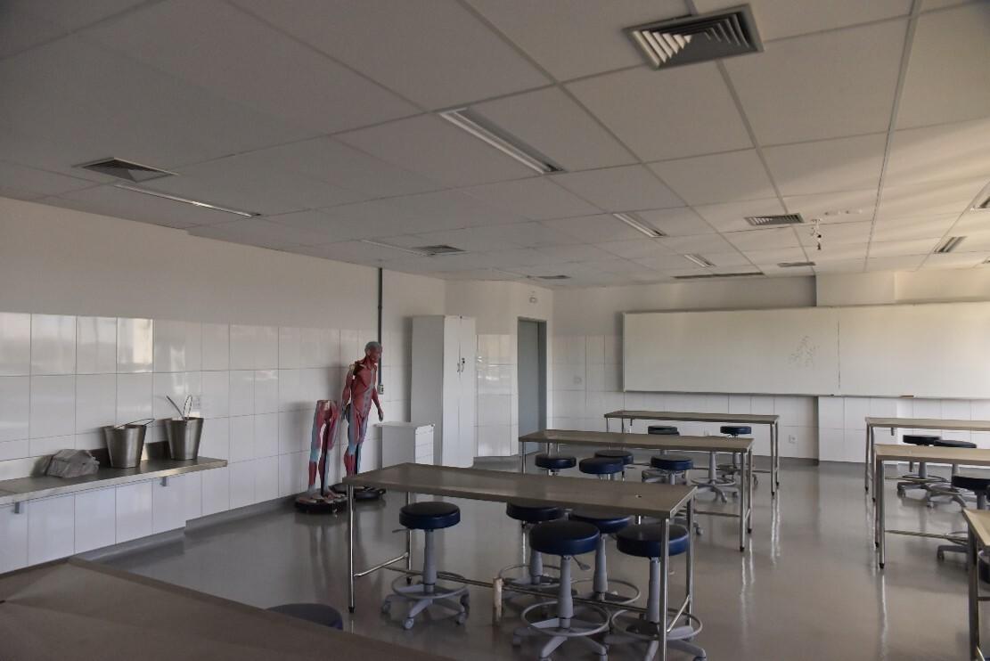 Lab. de anatomia