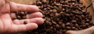 café capa