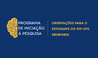 pip 2020-2021