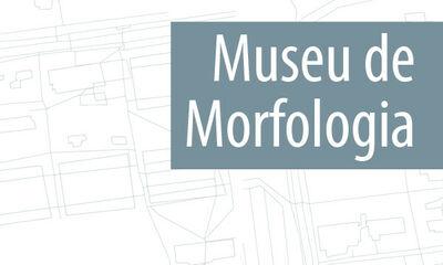 Museu de Morfologia