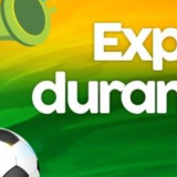 Expediente durante a copa