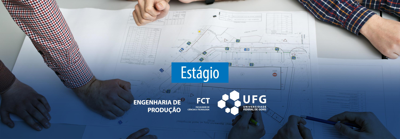 ESTÁGIO_ENG_FCT.