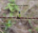 Belezas Ocultas do Cerrado - Heleno Dias Ferreira e Tatiana de Souza Fiuza