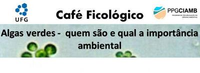 Banner - Cafe Ficologico 13 - Algas Verdes