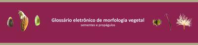 Banner - Glossário eletrônico de morfologia vegetal - sementes e propágulos