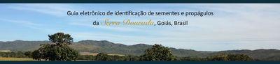 Banner - Guia de identificação de sementes e propágulos da Serra Dourada, Goiás Brasil