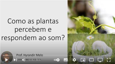 Pesquisa - Video sobre Livro - Plantas - sensibilidade ao som  - Hyrandir 2021