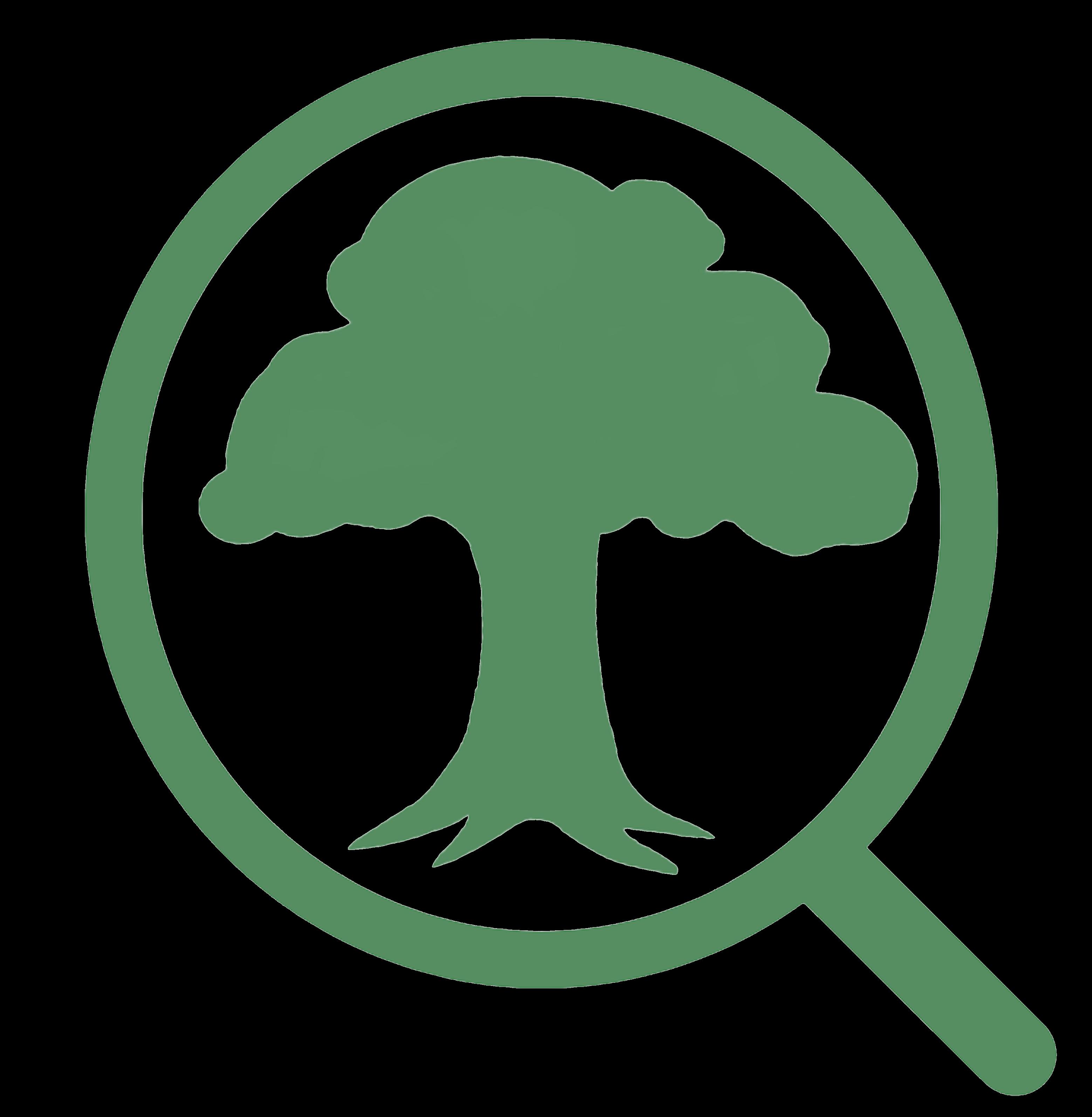 Extensão - Logomarca  - Que arvore e essa?