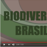 Video 1 - Evolucao e Biodiversidade Vegetal - Marcelo Kubo