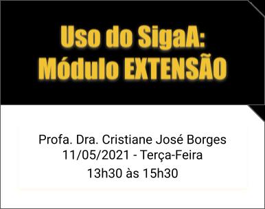 CursoSigaAEXTENSÃO
