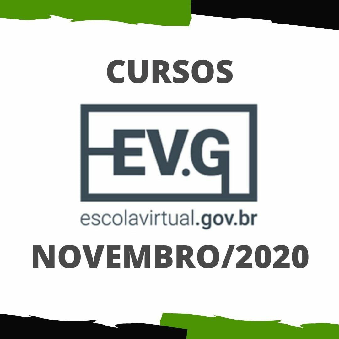 EVGNov20