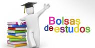 Imagem Bolsas