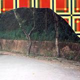 Tatiana Ferraz. Série Coverland, 2006. Colagem com fotografia, papel de parede e adesivo, 29 x 23 cm > https://tferraz.wordpress.com/obras/fotografias/coverland/