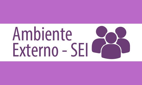 ambiente_externo_SEI