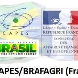 LOGO CAPES BRAFAGRI 2020