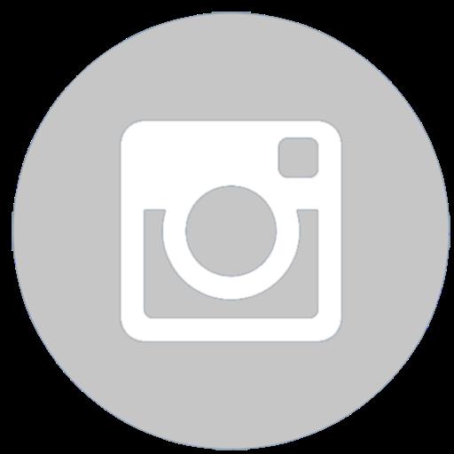 IconeInstagram